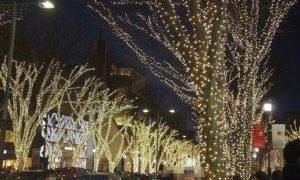 クリスマスイブは、表参道イルミ、バセドウのおかげです。