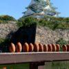 突然、秋のGO TO大阪城、焦ったけど・・万歩計は新記録、だめ女写真ありご無沙汰です