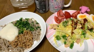 シニア派遣のお手伝いを頼む、時間1000円でよかったです、ネバネバ蕎麦と野菜炒め