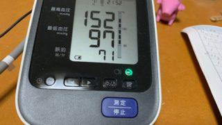 高血圧夫婦、別々に測る血圧、基本が不仲なので・・・ツバメ母鳥
