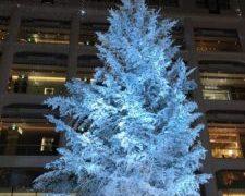 大人の休日、イルミみながら、銀座から東京駅まで歩こう・・・〆はトキア、インデアンカレー