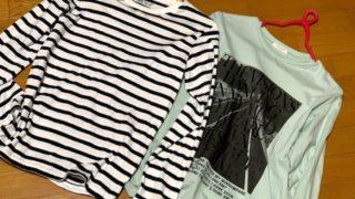 季節変わりに、Tシャツのお得な買い物、カレーと甘長シシトウのコラボ、超うまい(=゚ω゚)ノ